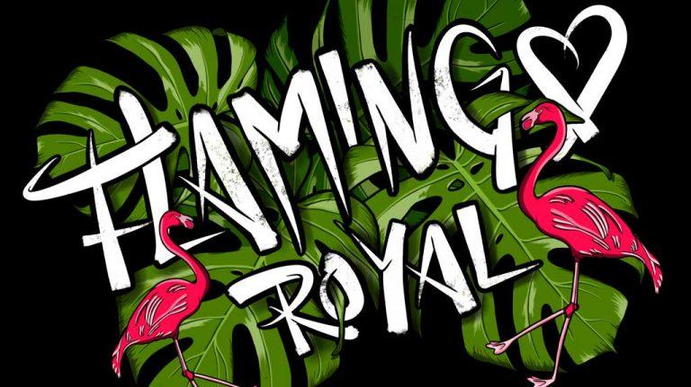 Djangonaut - Illustration - Handlettering - Flamingo Royal
