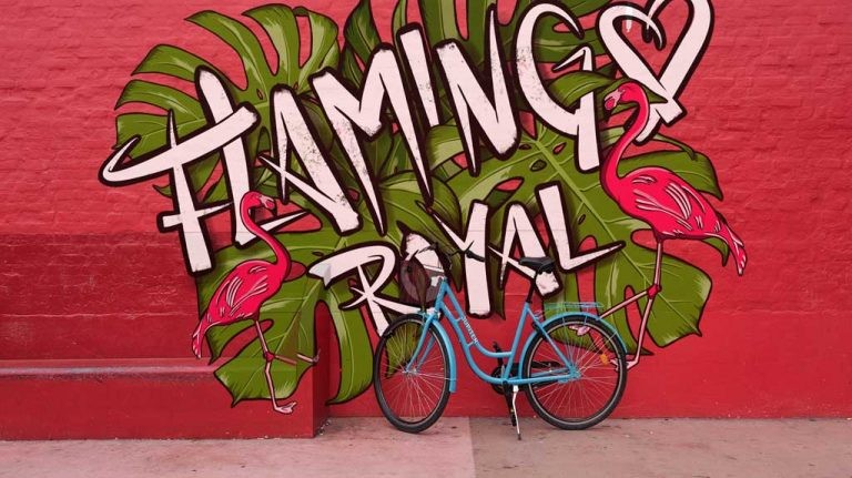 Djangonaut - Illustration - Handlettering - Flamingo Royal - Mural